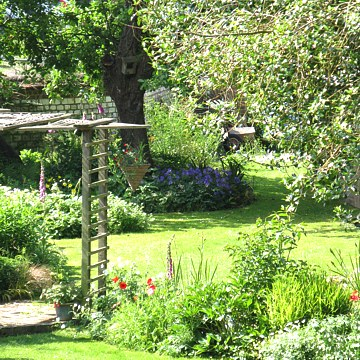 Norfolk Cottage Garden Seeds & Plants Spring Offer!