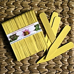 Yellow Eco-Friendly Wooden Plant and Seed Labels